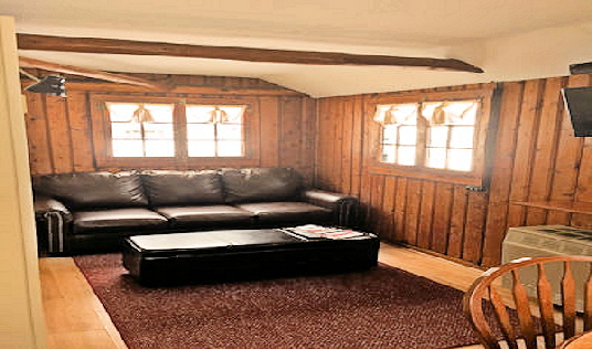Cabin Two Living Room with Leather Sofa Bed and Storage Ottoman
